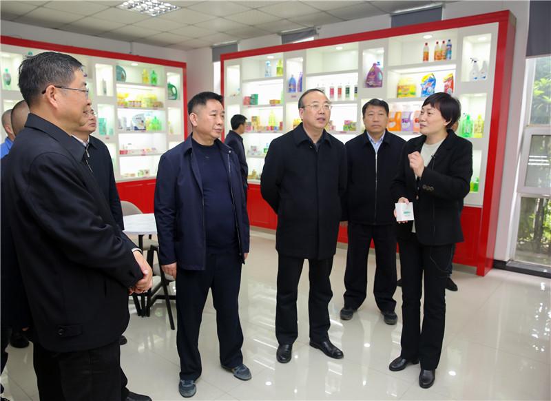 张祥安在迎江大观宜秀调研经济社会发展情况